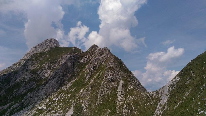 monte Antander